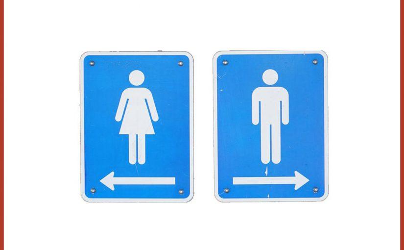 Aktuelle Spendenaktion: Schul-Toilettensanierung